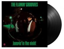 Vinyl FLAMIN' GROOVIES - JUMPIN' IN THE NIGHT