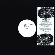 Vinyl Vinylized - Vol. 8