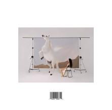 Vinyl LLERGO, MARIA JOSE - SANACION