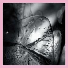 Vinyl LOSCIL - CLARA