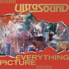 Vinyl ULTRASOUND - EVERYTHING PICTURE