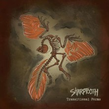 CD SHARPTOOTH - TRANSITIONAL FORMS
