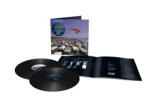 Vinyl A MOMENTARY LAPSE OF REASON