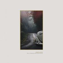 Vinyl BUG, STEVE - NEVER ENDING WINDING ROADS