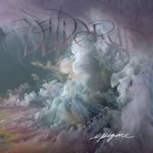 Vinyl WILDERUN - Epigone