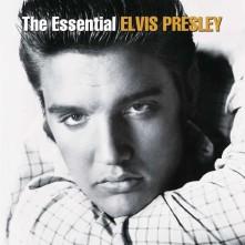 Vinyl The Essential