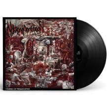 Vinyl NEKROMANTHEON - VISIONS OF TRISMEGISTOS