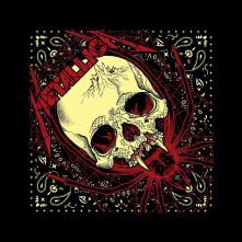 Šatka Spider Skull, Unisex, Čierna, Univerzálna