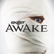 CD SKILLET - AWAKE