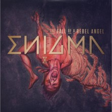 Vinyl The Fall Of A Rebel Angel