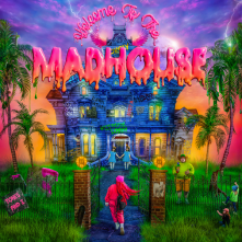 CD Welcome to the Madhouse